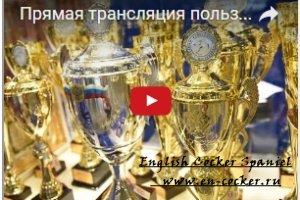 Прямая трансляция World Dog Show 2016 в Москве